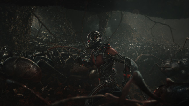 Marvel's Ant-Man Scott Lang/Ant-Man (Paul Rudd) amongst his ants. Photo Credit: Film Frame © Marvel 2015