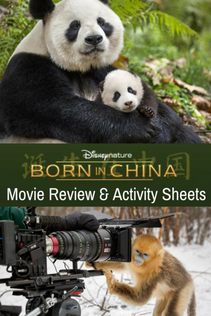 Born in China Review and free printable activity sheets for the family