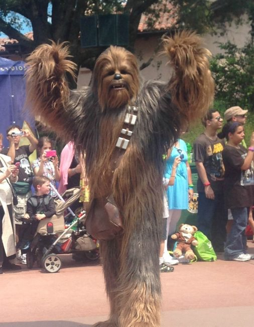 Chewbacca at Disney World