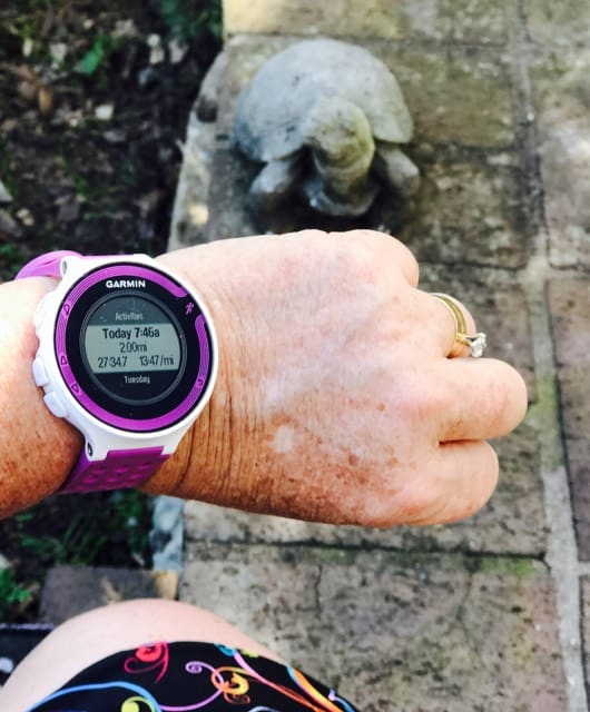 hand with a runners watch with a turtle statue in the background