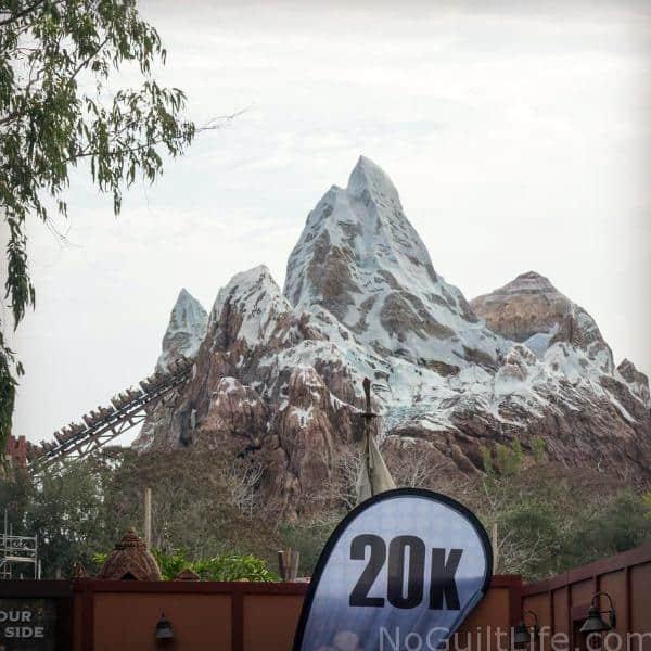 2016 Walt Disney World Marathon Race Recap Part 2