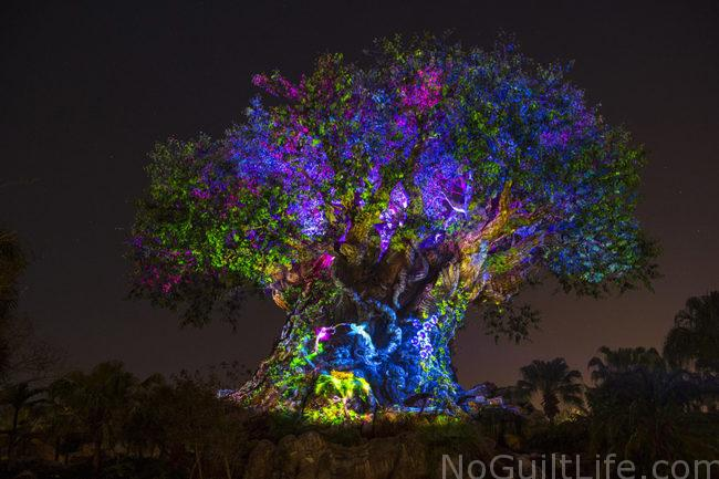 tree of life show Awaken Summer