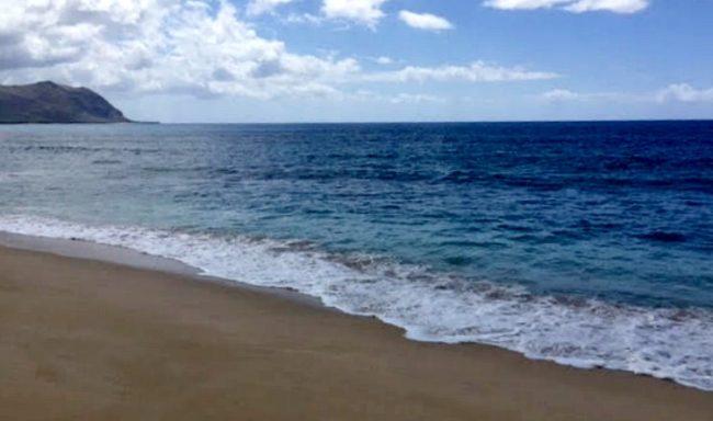 hawaii-1-allison