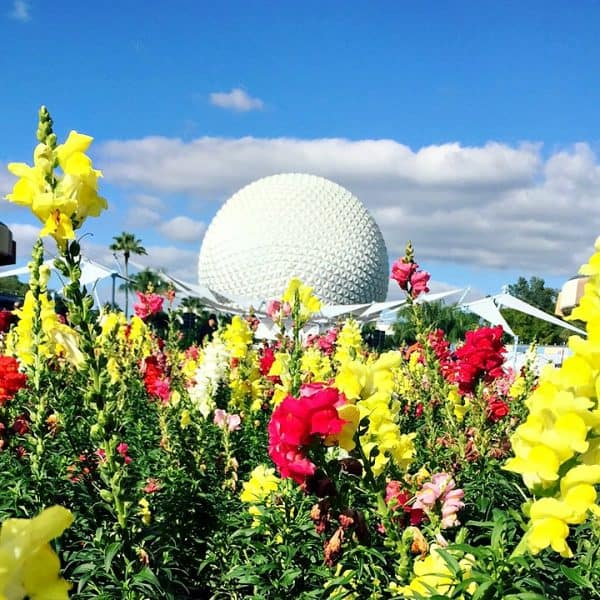 EPCOT Neighborhoods: What You Need to Know!