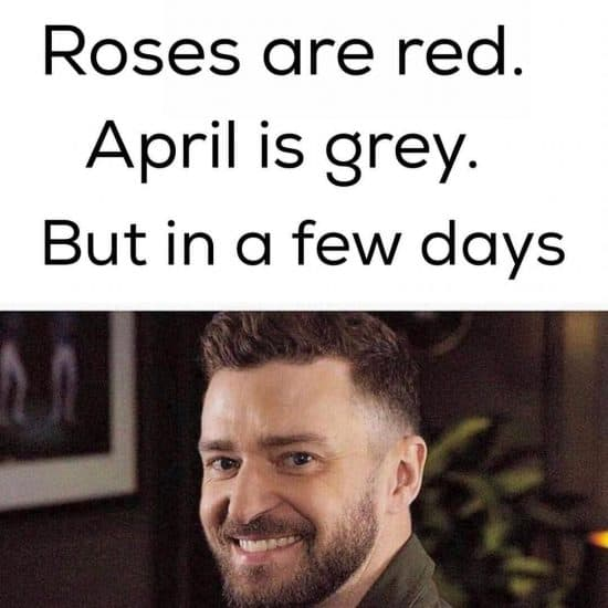 Its gonna be may roses are red monday meme justin timberlake