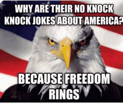 Image result for 4th of july funny