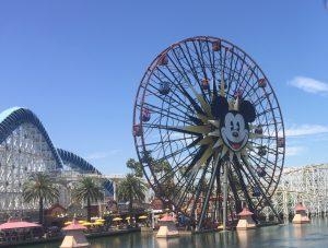 Bathrooms on the Disneyland Half Marathon Course