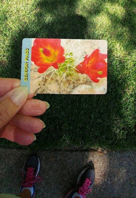 National Park Lifetime Pass Price Increase My No Guilt