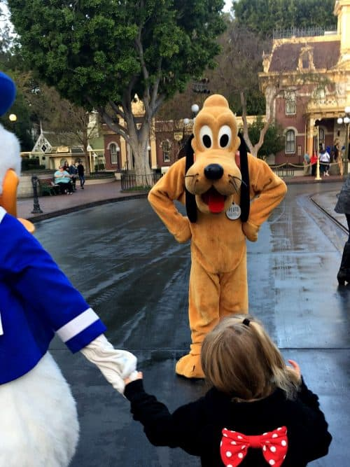Donald Duck, Pluto and little girl at Disney