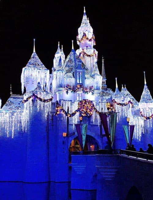 Sleeping Beauty Castle Christmas Lights