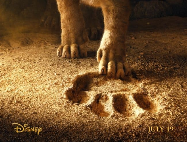 First Look: The Lion King Teaser Trailer on Thanksgiving