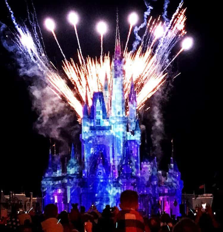 Happily Ever After Cinderella Castle