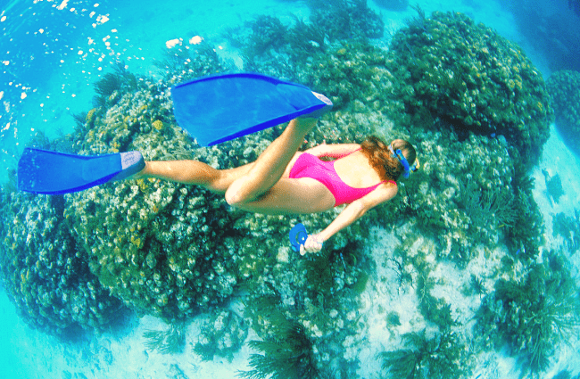 save money in Hawaii with low cost activities like snorkeling