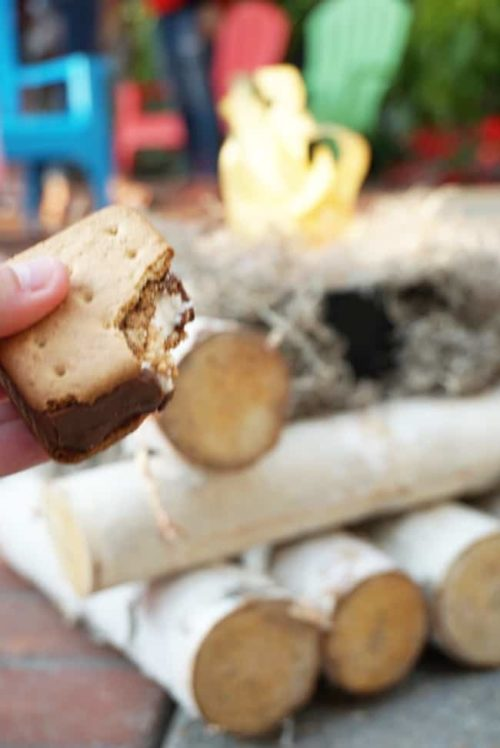 Campfire Tales & Smores at Gaylord National summerfest