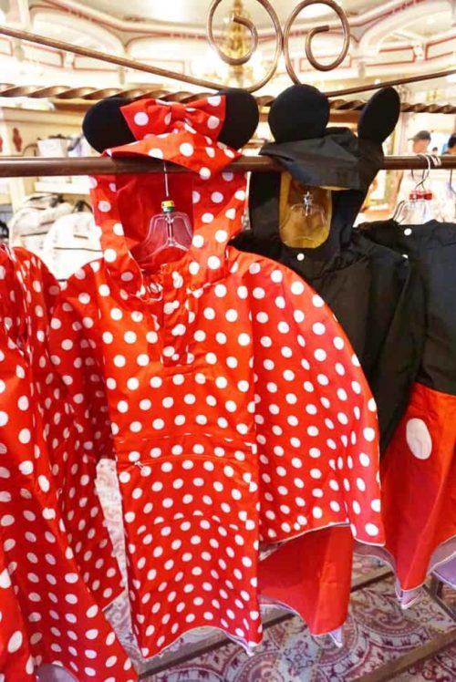 Walt Disney World Ponchos