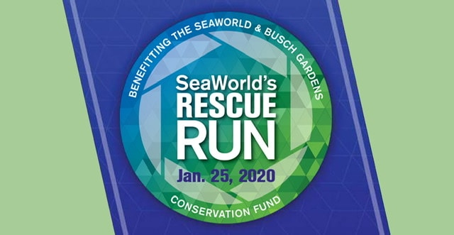Sea Worlds rescue run
