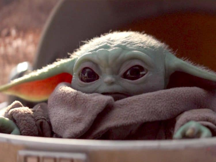 baby yoda merchandise: the search is on!
