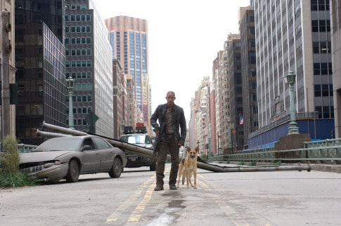 I am legend lessons learned about infection and viruses through movies
