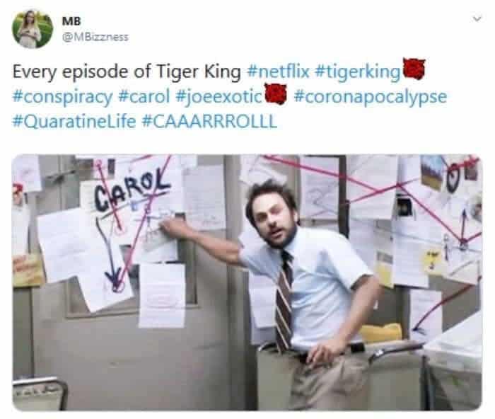 Murder, Mayhem and Madness: Carole Baskin Tiger King Memes ...