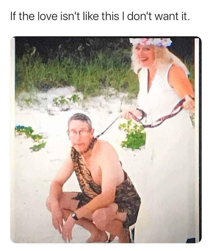 tiger king meme carole baskin and husband on wedding day