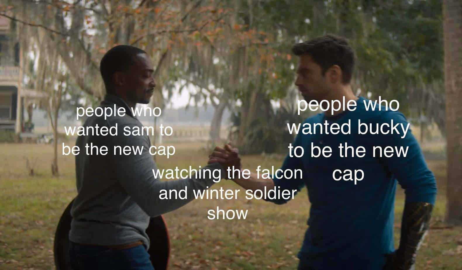 new cap falcon and winter soldier memes