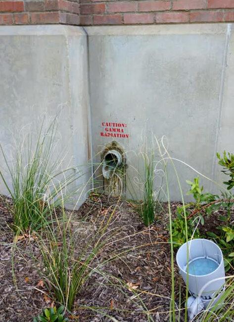 gamma radiation spigot avengers campus easter egg
