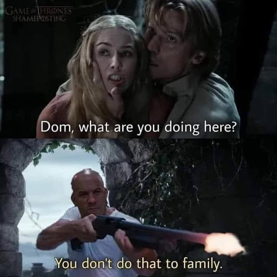 fast and furious family memes got